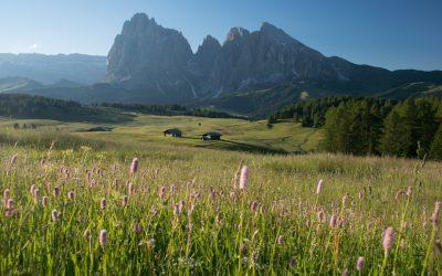 Itinerář pro cestu do západních Dolomit: Alpe di Siusi, Seceda, Passo Gardena a mnohem víc